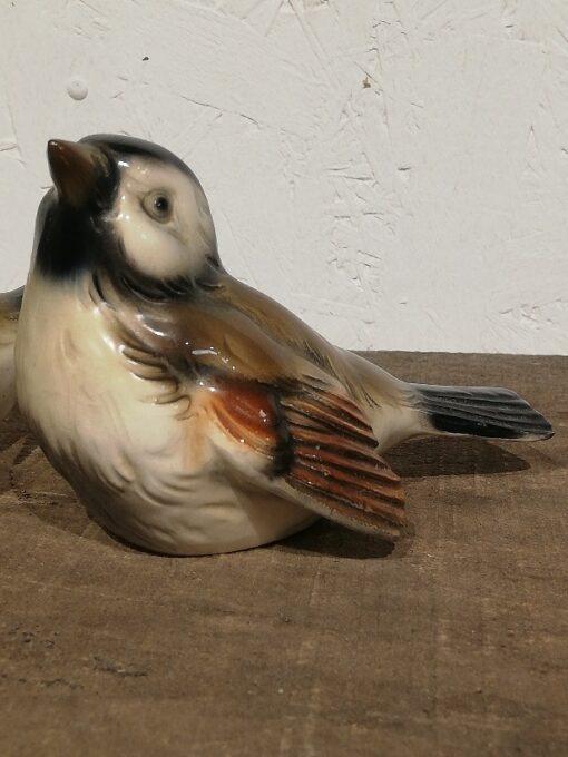 Goebel fugl